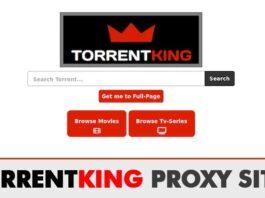 TorrentKing Proxy Unblocked   Top TorrentKing Mirror Sites