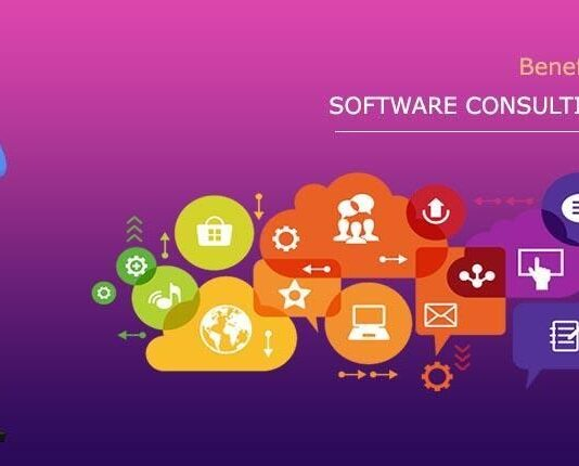 Software Consultancy